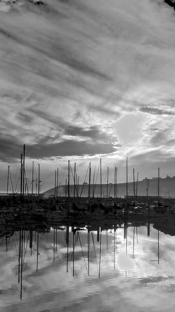 November Evening Masts