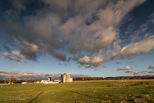 trees sunrise cpl silos maryland wideangle sky farm color fall landscape clouds walkersville unitedstates us