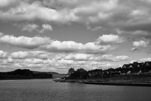 river_shannon_L2014971
