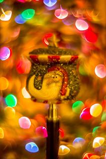 festive-2171 | by wyntastr