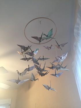 Taylor's Origami Cranes