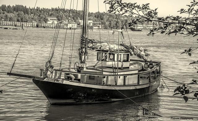 Sailboat on the Fraser River - Sapperton Landing (Explored)