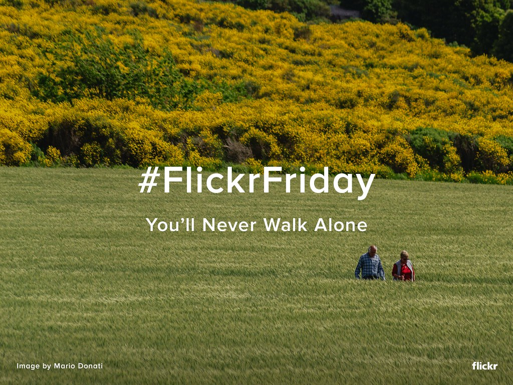 Flickr Friday You Ll Never Walk Alone It S A Seasonal Ti Flickr
