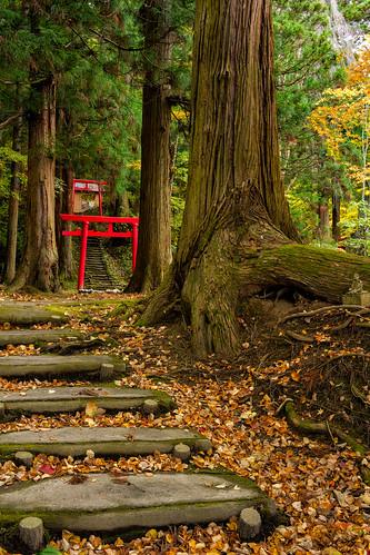 三戸郡 青森県 日本 jp aomori japan hokoji temple autumn sony e sonnar3528za fall