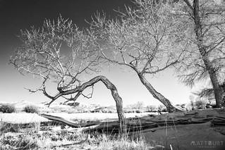 IMGP5261-Edit | by Matt_Burt