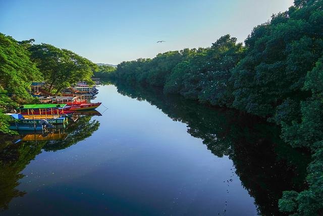 Negril River - Jamaica