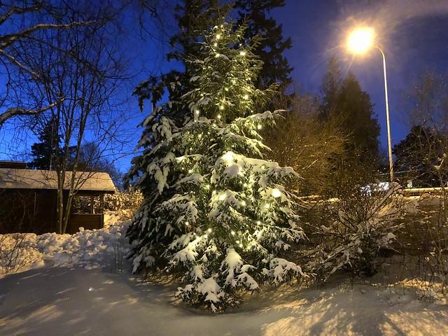 Snow Christmas Usa Chance 2021 Snow And Ice Christmas Customs And Traditions Whychristmas Com