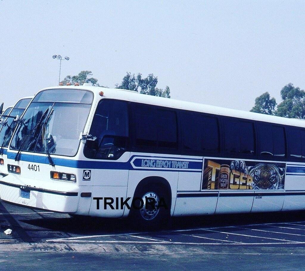 1981 GMC RTS Long Beach Transit Bus. 4401