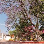 Chazumba Semana Santa 2018 (07)