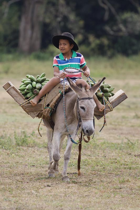 Llaneros Ascanio_Colombia Llanos 199A1513