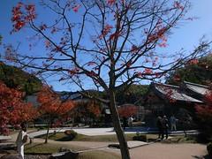 Museum Nasional Kyushu