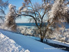 Winter Painting by Konstantin Khabarlak
