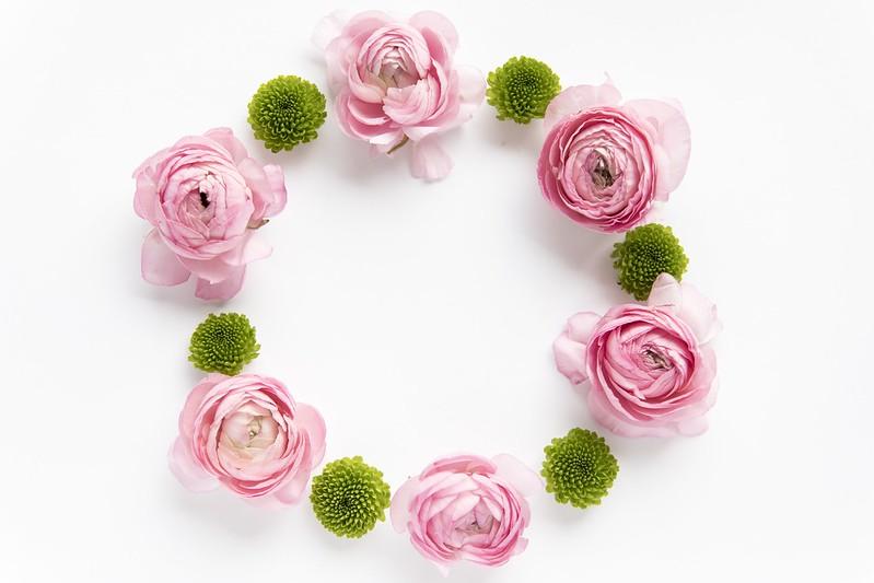 Обои цветы, декор, ранункулюсы, composition, суккуленты, succulents картинки на рабочий стол, раздел цветы - скачать