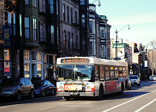CTA Bus 8 Halsted