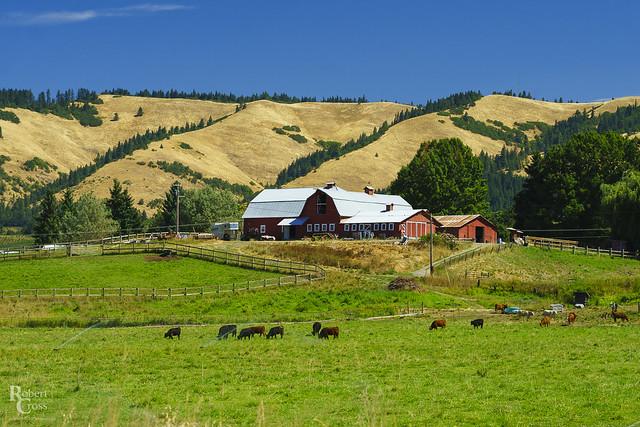 A Farm in Oregon