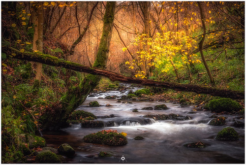 nisifilters autumn benro canon dunningglen fall forest landscape longexposure nature perthshire river scotland trees woodland