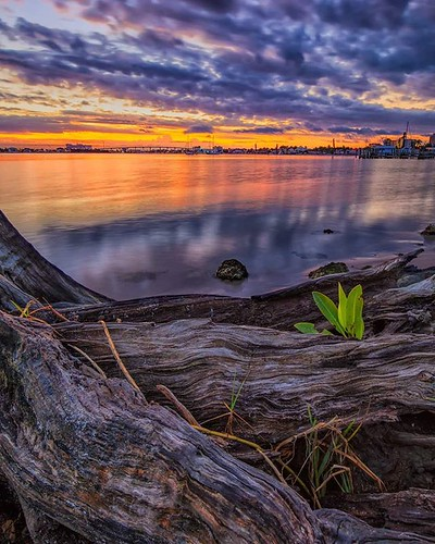 instagram ifttt sunrise landscapephotography sunset water clouds moody fortmyers fortmyersbeach florida canon driftwood