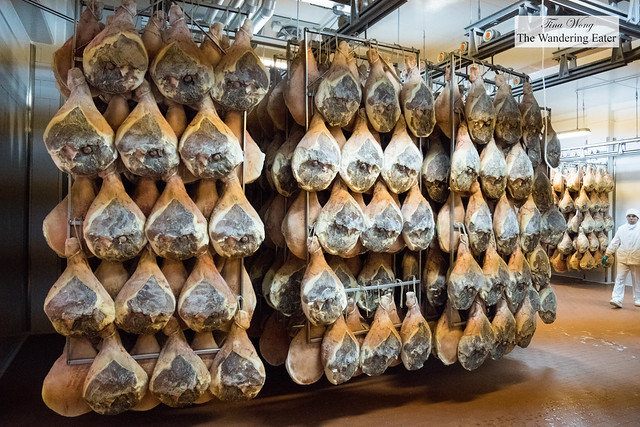 Factory tour of prosciutto crudo in Rovagnati's Parma factory location