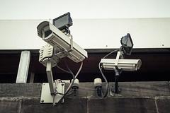 КАД оборудуют системами видеонаблюдения