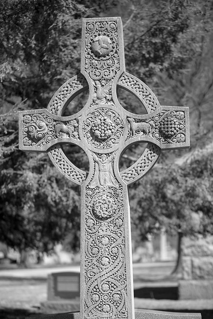 Holy Cross Cemetery-3E0A0013pser