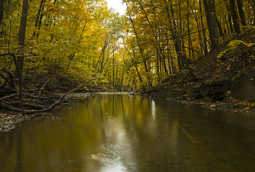 fall autumn nature landscape water exposure canon 2018 sun leaves gorge glen hike hiking weekend sunday peaceful