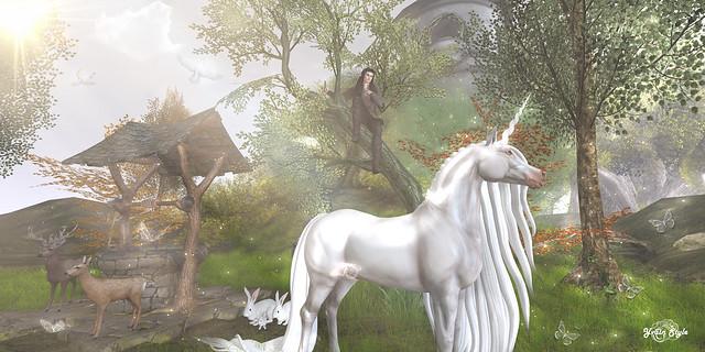 #20 - Fairytopia