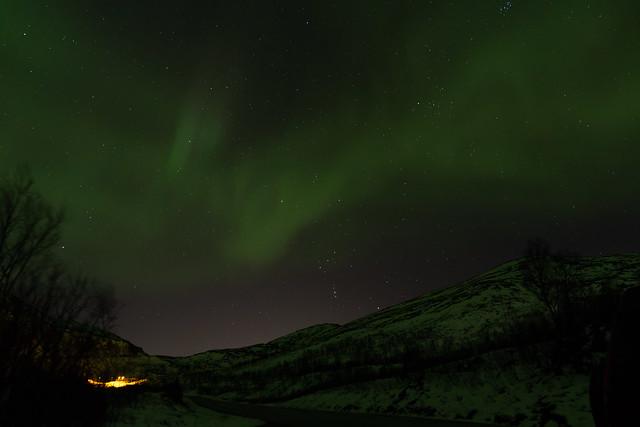 Lyfjorddalentracking_2-9823