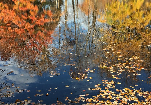 On Reflected Pond