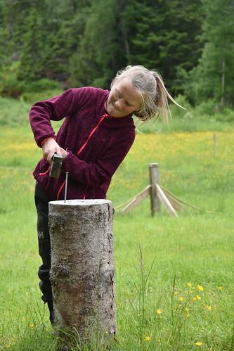 girl teenager hammer nail tool hitting field activity wood