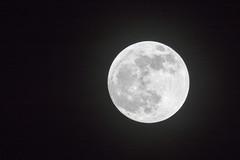 Super Wolf Moon