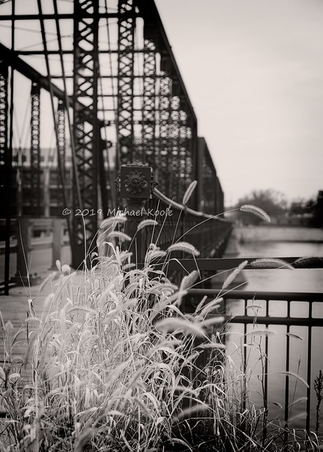 Grass and Iron - Sixth Street Bridge