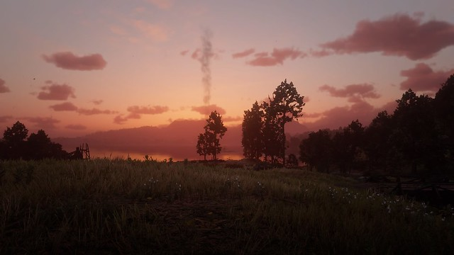 Red Dead Redemption 2_20190129050310