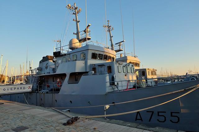 Navires écoles de la Marine Nationale dans le port de La Rochelle, Le Lion et le Guepard