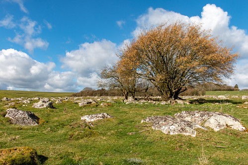 Field of sarsen stones | by Keith now in Wiltshire