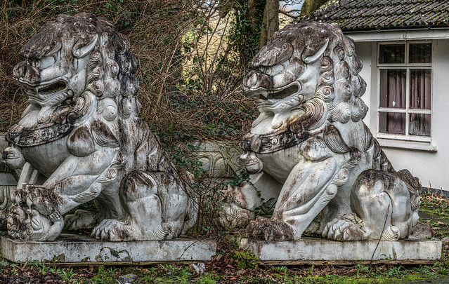 I WAS A BIT SURPRISED TO SEE THESE CHINESE LIONS [NEAR ASHTOWN RAILWAY STATION]-148262