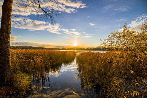 canon eos 5ds 5dsr glen lake minnetonka minnesota mn reeds marsh autumn sunrise woods nature landscape hdr trees fall bare cold blue sky clouds reflection leaves forest