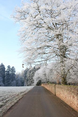 Winterspaziergang | by herz-allerliebst