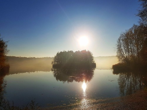 landscape nature przyroda mobilephotography morning lake jezioro woda water reflection day november autumn fall mist mgiełka samsung s7edge quiet europe europa polska poland turawskie turawa odbicie sky tree island serene drzewa wyspa galaxy smg935f sunrays snapseed