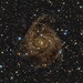 IC 342 by ASTROGUFO (Carlo Rocchi)