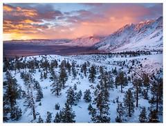 Mt tom sunrise