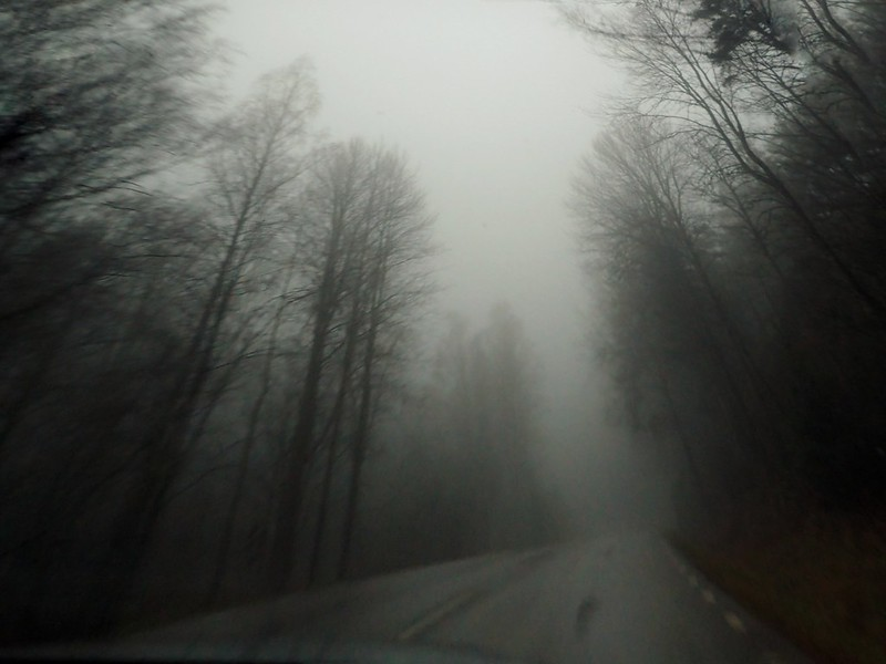 Foggy road scouted..