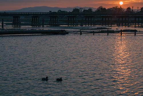 japan kyoto 京都府 嵐山 渡月橋 嵯峨野 橋 bridge 川 river sunrise 日の出