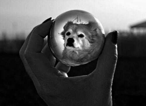 Reflection | by patrick.verstappen