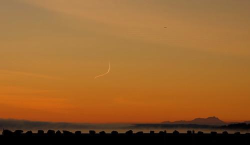 sky sunrise bird rocks fog clouds campbellriverbc nikon d3400 tamron18400 affinity mountain contrail