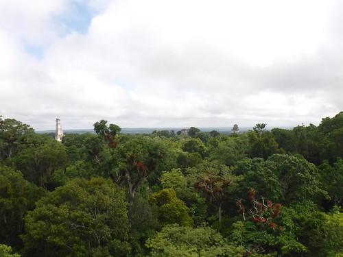 Mayan Ruins of Tikal, Guatemala | by taketwosailing