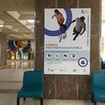 Coimbra´s University Hospital hall. November 2018. Coimbra_Portugal II