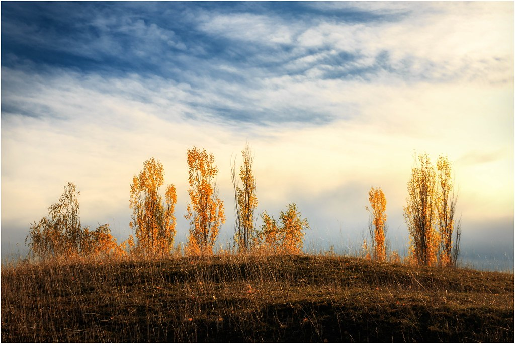 Der Herbst ist über´n Berg