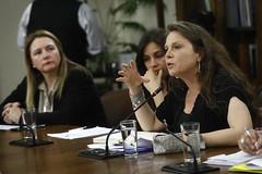 Comisión de Desarrollo Social