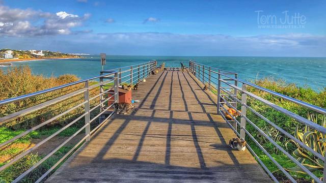 Cat paradise, Deck da praia do peneco, Albufeira, Portugal - 2080