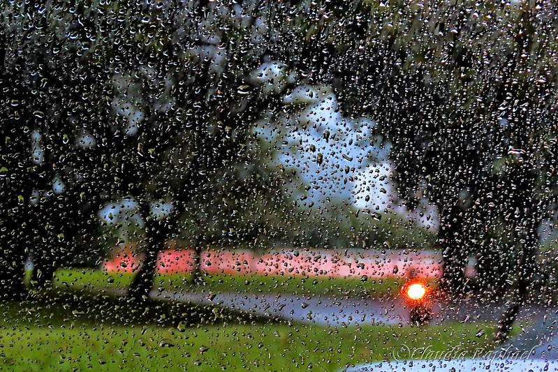 Lagoa Rodrigo de Freitas - Dia de chuva